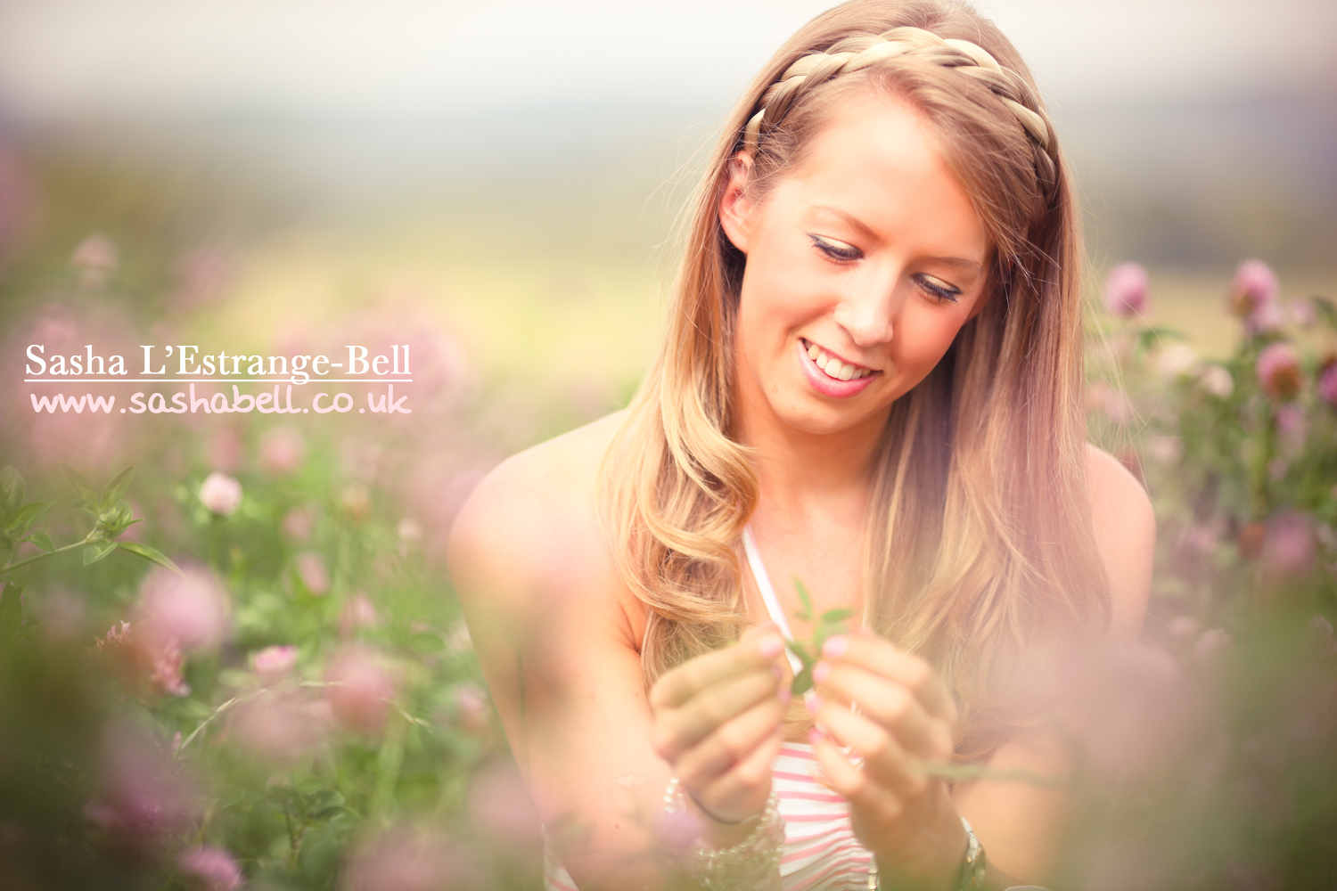 Pink Clover Field – Day 337/365