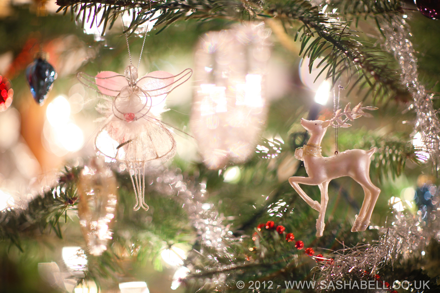 Christmas Decoration – Day 95/365