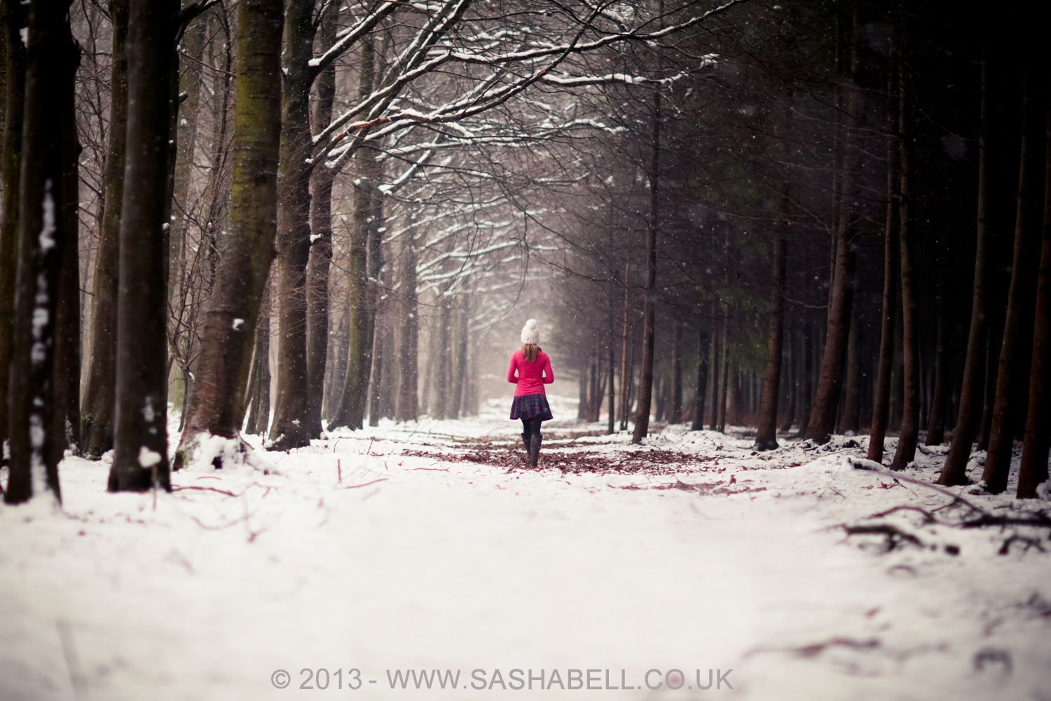 Winter Woods – Day 121/365