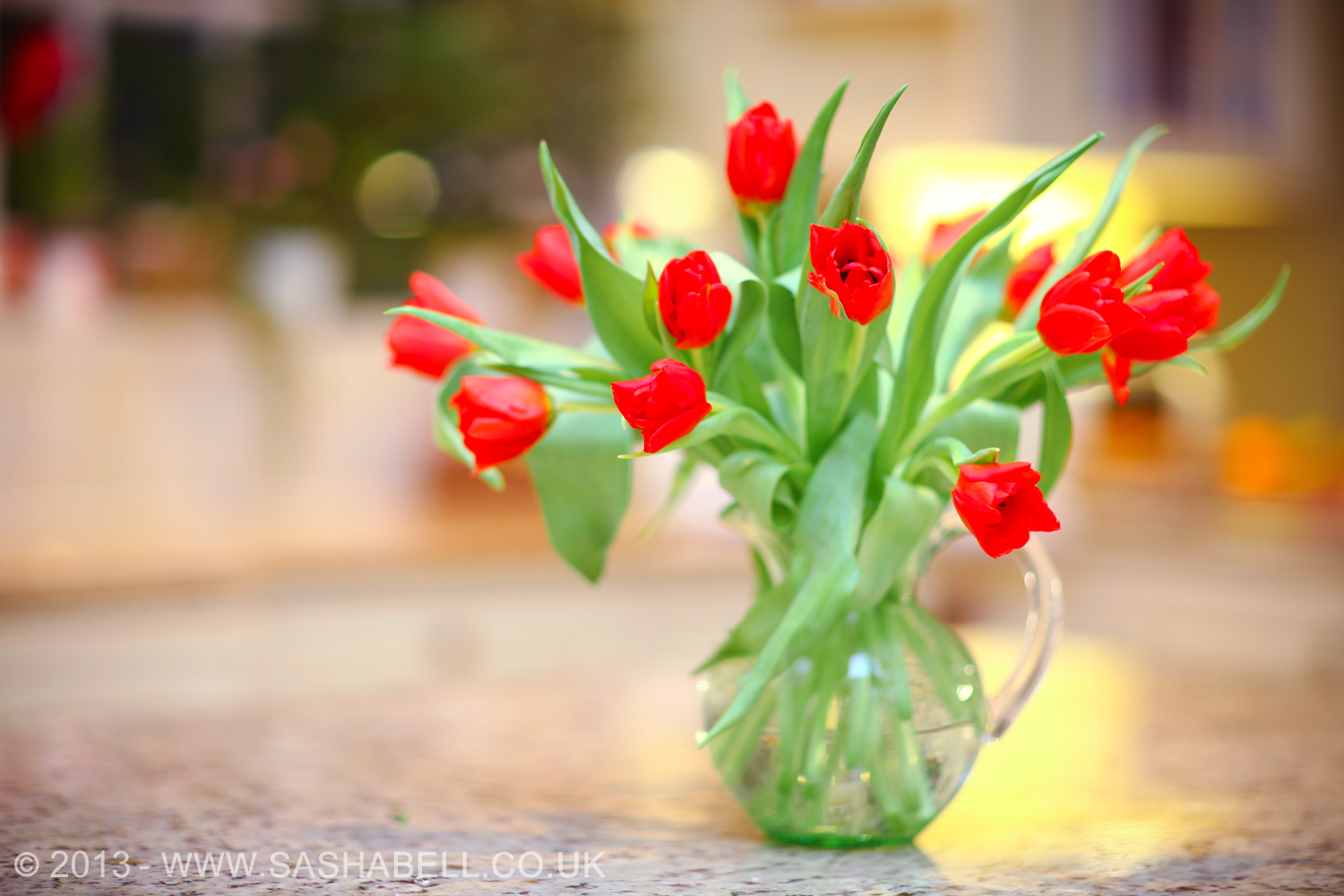 Red Tulips – Day 104/365