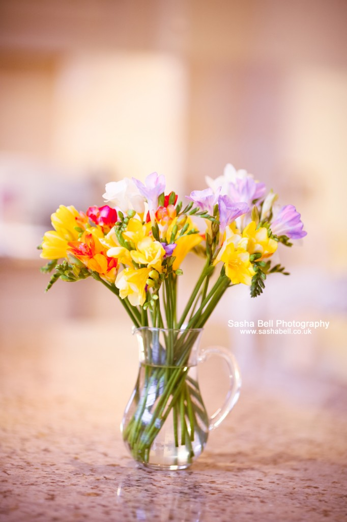Sweet Freesias - Day 163/365