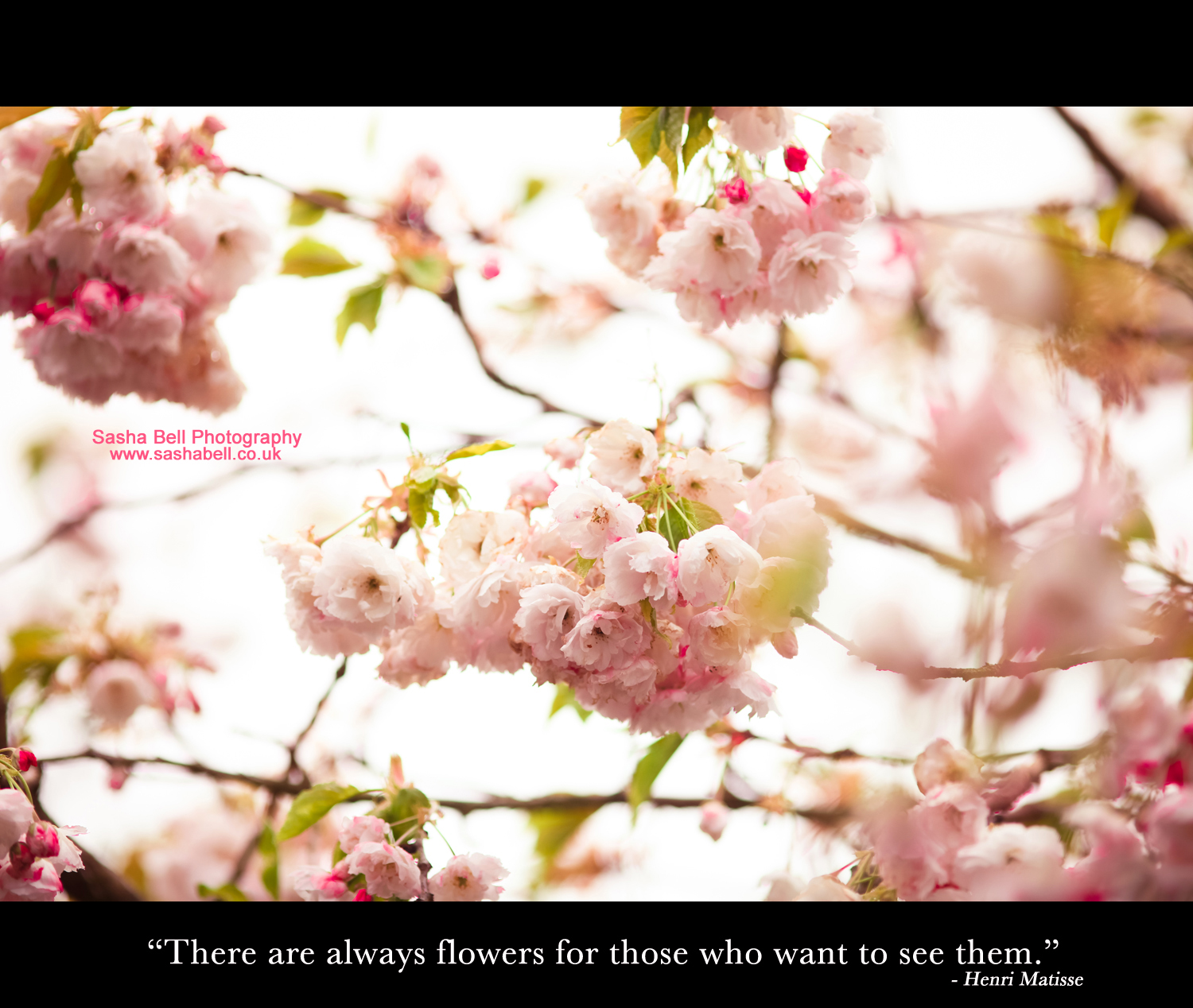 """There are always flowers for those who want to see them."""