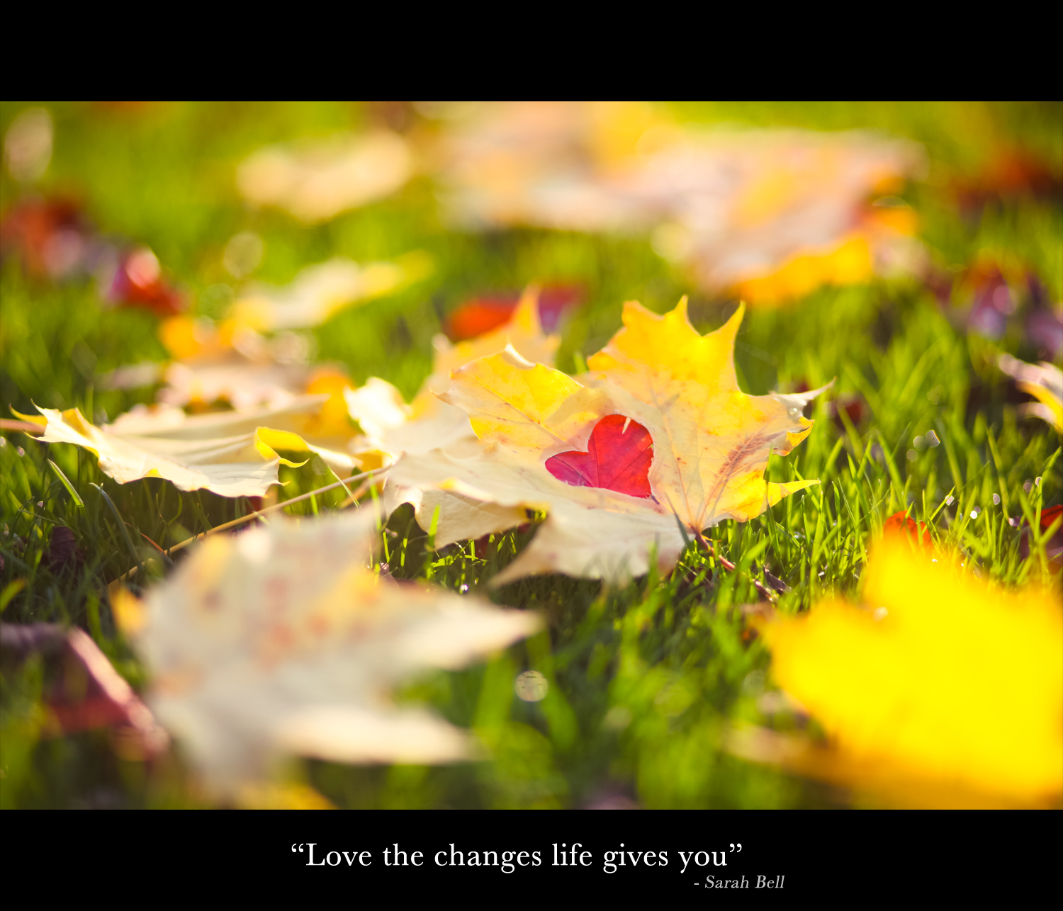 """""""Love the changes life gives you"""""""