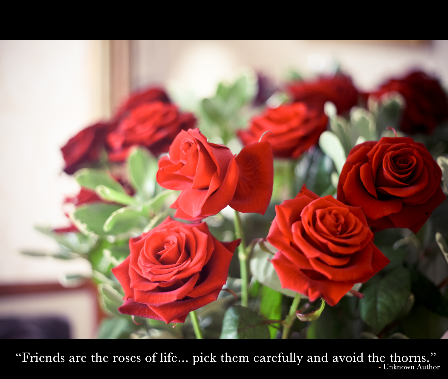 """Friends are the roses of life… pick them carefully and avoid the thorns"""
