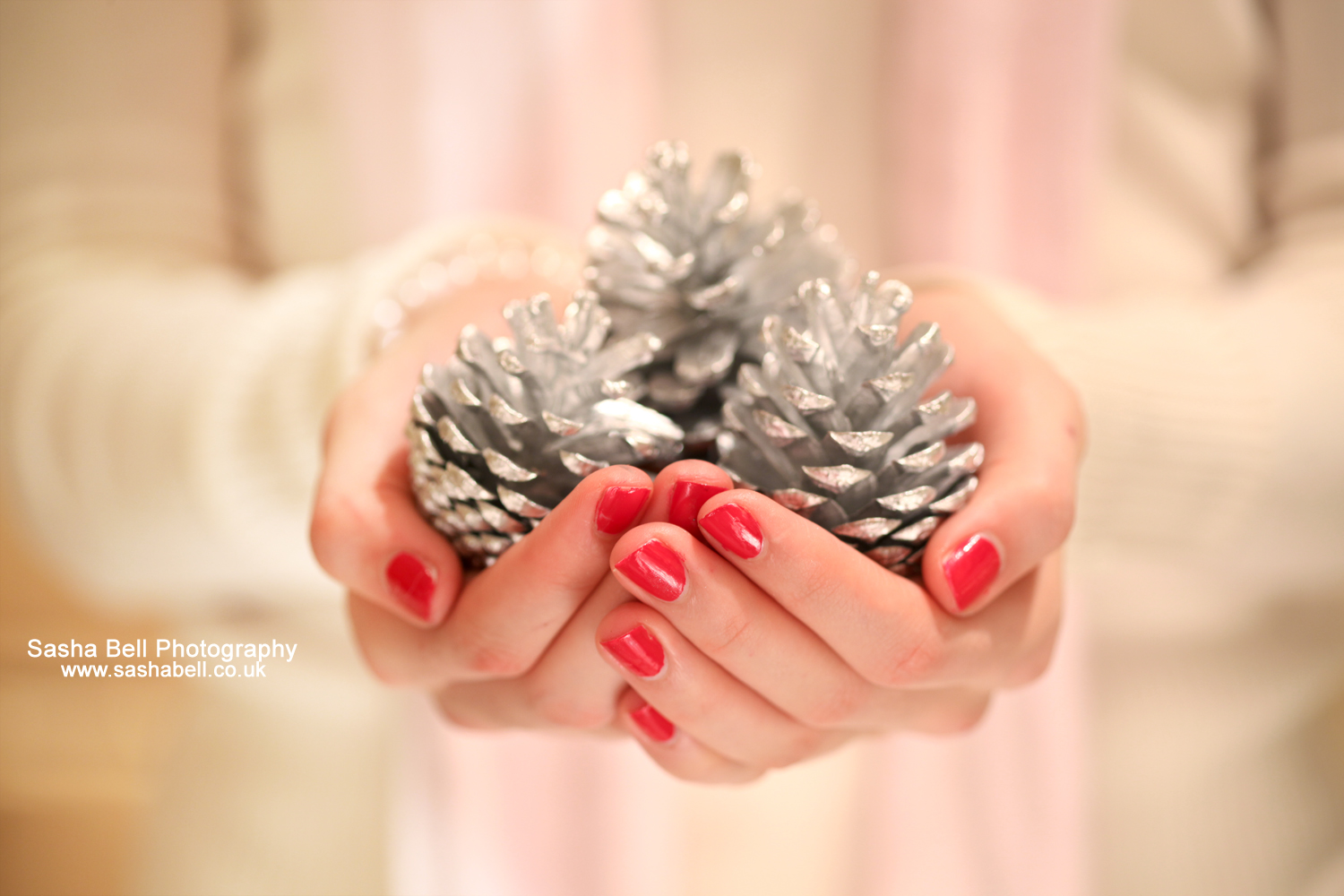 Silver Pine cones – Day 60/365