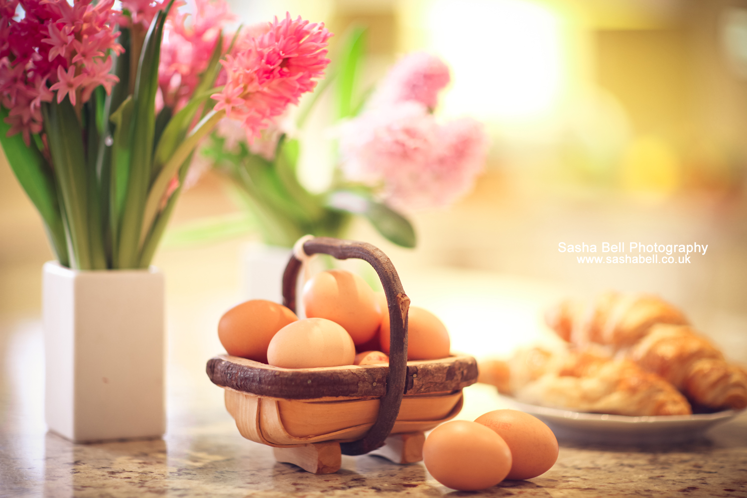 Fresh Eggs – Day 176/365