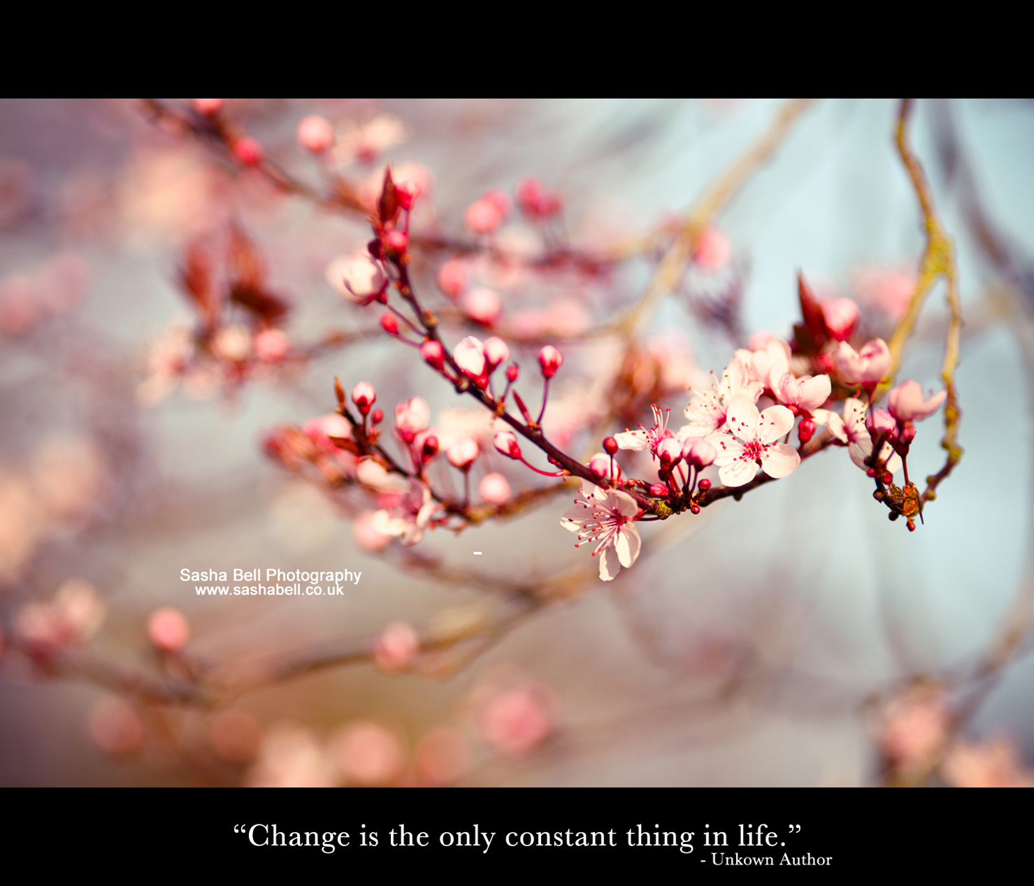 """Change is the only constant thing in life."""