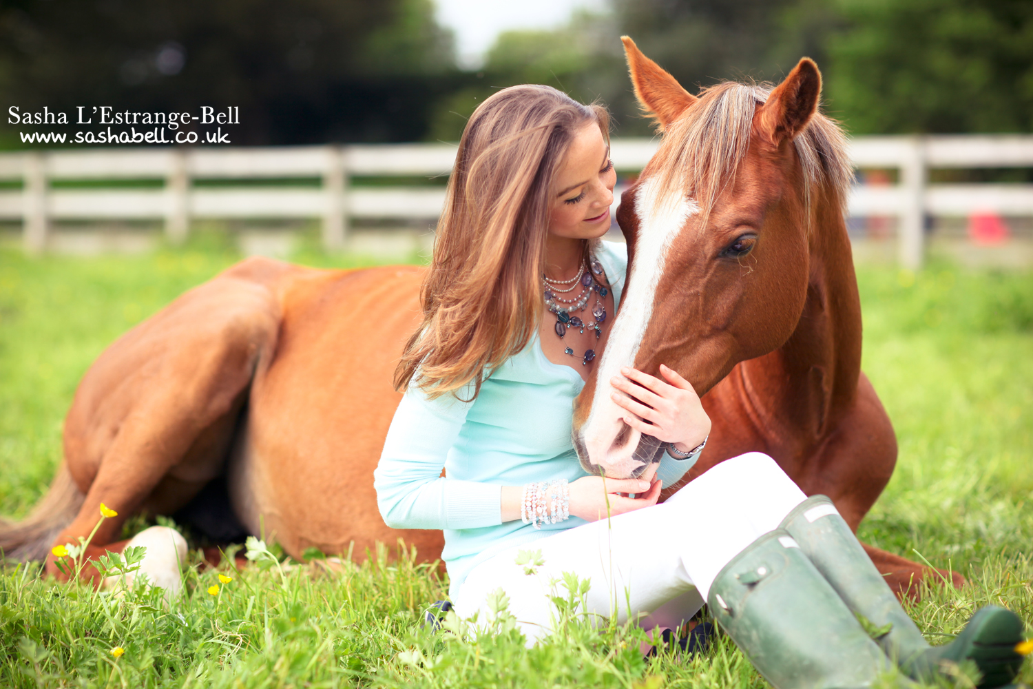Chestnut Horse Lying Down with Girl