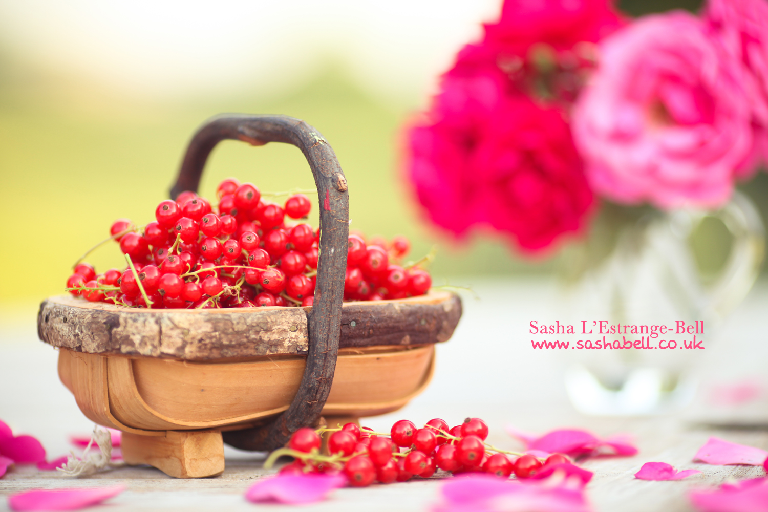 Red Currants & Roses – Day 298/365