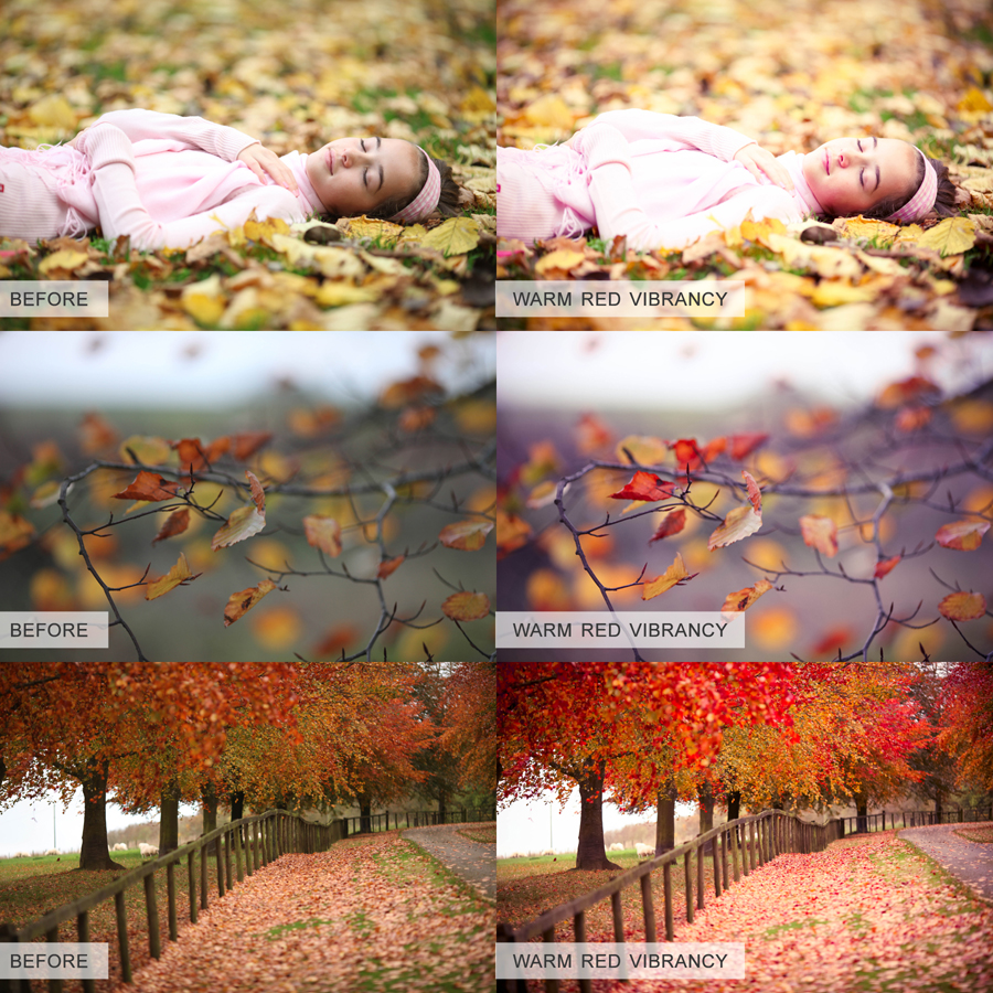 Vibrant Colours Lightroom Preset